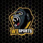 Wesports Academy